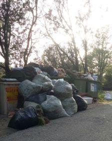 Abocament improcedent de restes de jardí a la via pública