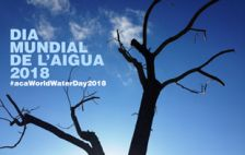 Dia Munidal de l'Aigua 2018
